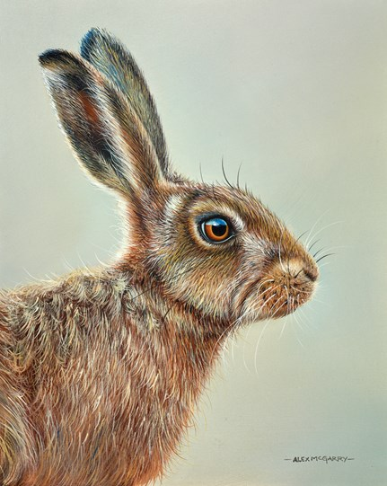 Bold Hare by Alex McGarry - Varnished Original Painting, Canvas on Board